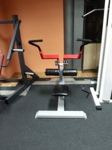 12. Maszyna do treningu tricepsów.